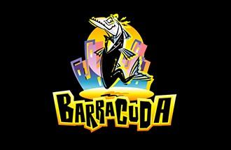 barracuda-dde0c4d43f