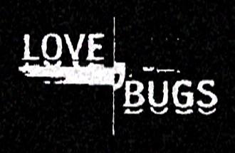 love-bugs-17dae62688